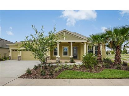 8138  SWISS CHARD CIR  Land O Lakes, FL MLS# T2761181