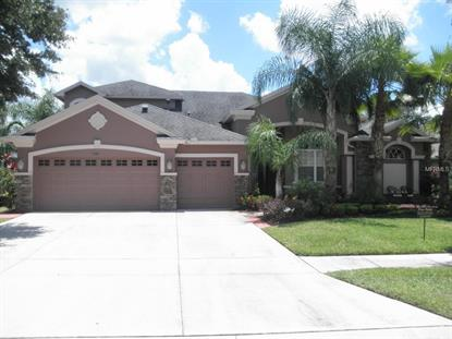 3349 MARBLE CREST  DR Land O Lakes, FL MLS# T2761680