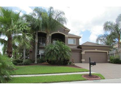 3538  MUNNINGS KNL  Land O Lakes, FL MLS# T2762845