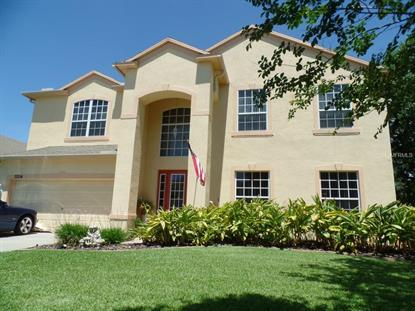 3204  RUSSETT PL  Land O Lakes, FL MLS# T2765392