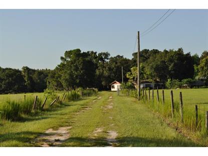 7701 W KNIGHTS GRIFFIN  RD Plant City, FL MLS# T2767805