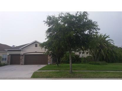6514  CARRINGTON SKY DR  Apollo Beach, FL MLS# T2767837