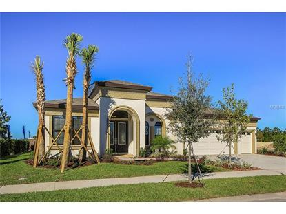 8528  SWISS CHARD CIR  Land O Lakes, FL MLS# T2771428