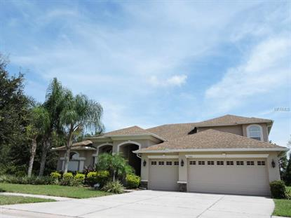3300 MARBLE CREST  DR Land O Lakes, FL MLS# T2778270