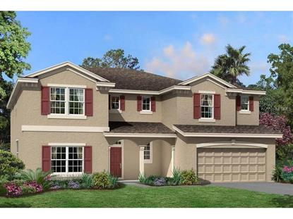8213  BLUEVINE SKY DR  Land O Lakes, FL MLS# T2778789