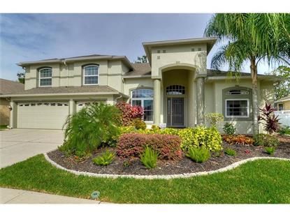 4842 WALNUT RIDGE  RD Land O Lakes, FL MLS# T2779592