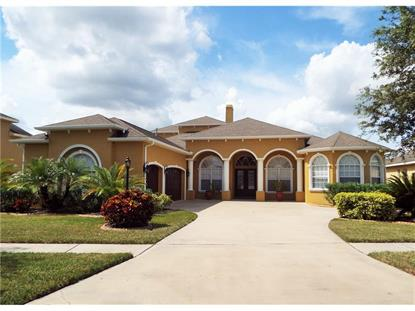 1007 CARRIAGE PARK  DR Valrico, FL MLS# T2783413