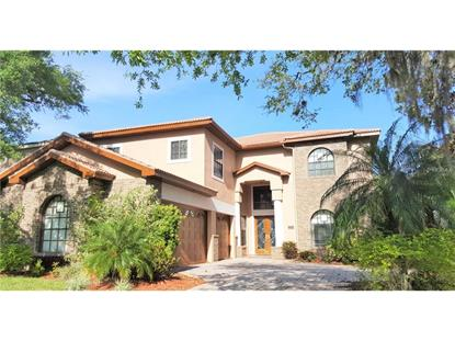 2214  CYPRESS HOLLOW CT  Safety Harbor, FL MLS# T2794242