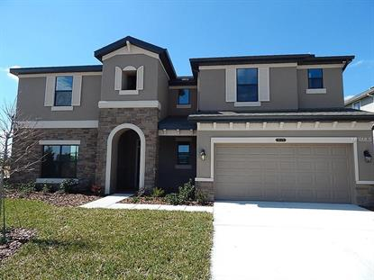 8229  MALLOW MIRROR LN  Land O Lakes, FL MLS# T2795407