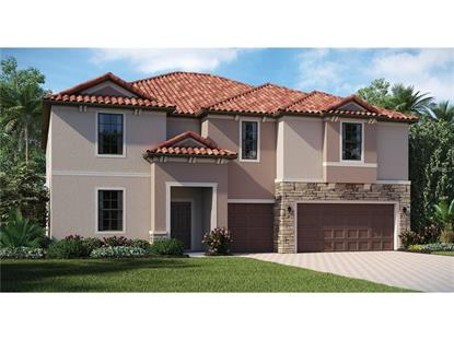 19001  LUTTERWORTH CT  Land O Lakes, FL MLS# T2795884