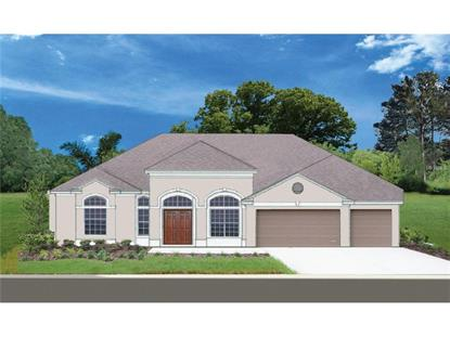 24523  HIDEOUT TRL  Land O Lakes, FL MLS# T2795948