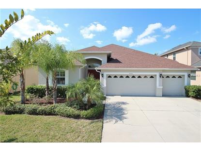 3331  DIAMOND FALLS CIR  Land O Lakes, FL MLS# T2797874