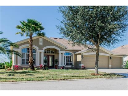 6511 CARRINGTON SKY DR Apollo Beach, FL MLS# T2803887