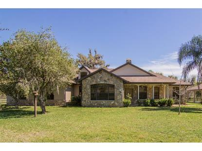23290 CREEK HOLW Brooksville, FL MLS# T2808382