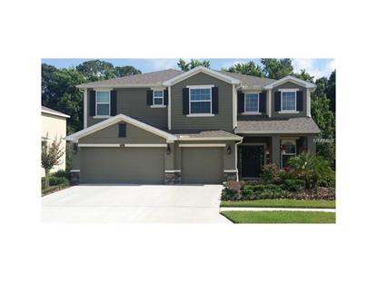 2999 CALVANO DR Land O Lakes, FL MLS# T2813434