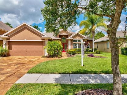 lithia fl homes for sale