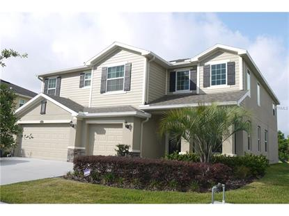 2507 CALVANO DR Land O Lakes, FL MLS# T2818878