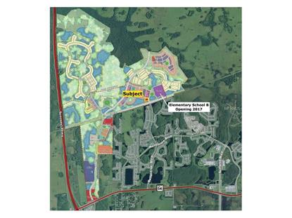 BRIGHTON LAKE ROAD Land O Lakes, FL MLS# T2820217