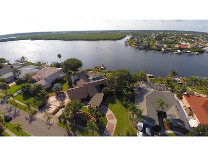 6605 SEABIRD WAY Apollo Beach, FL MLS# T2825037