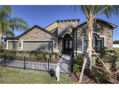12727 FLATWOOD CREEK DR Gibsonton, FL MLS# T2830195
