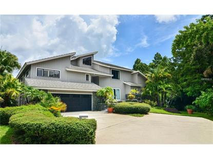 1609 HAMPTON CT Safety Harbor, FL MLS# T2834071