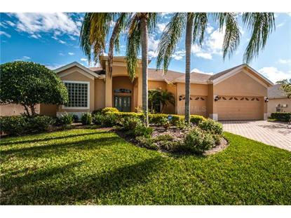 5167 KARLSBURG PL, Palm Harbor, FL