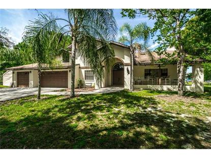 8909 JASMINE BOULEVARD Port Richey, FL MLS# U7615939