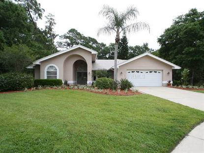 1100 LAKE RIDGE COURT Safety Harbor, FL MLS# U7617357