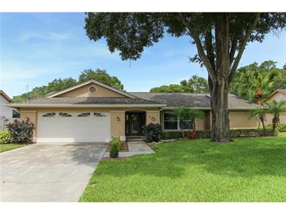 5024 BRIDGEPORT DRIVE Safety Harbor, FL MLS# U7700680