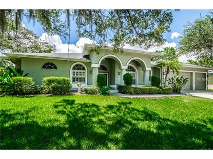 3003 KEY HARBOR DRIVE Safety Harbor, FL MLS# U7703988