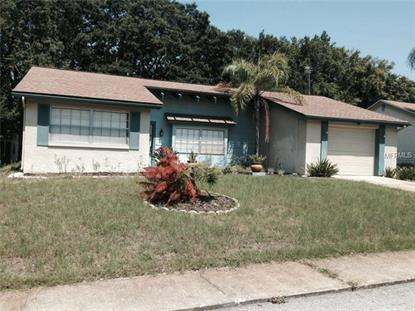12409 PADDOCK LANE Bayonet Point, FL MLS# U7704431