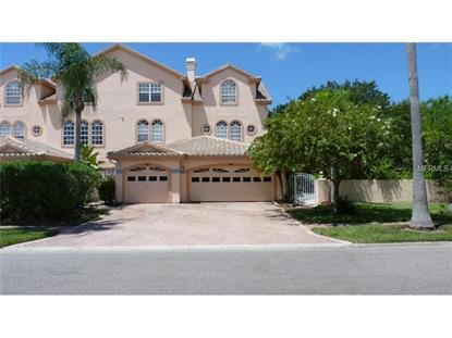 1806 LAGO VISTA BOULEVARD Palm Harbor, FL MLS# U7706467