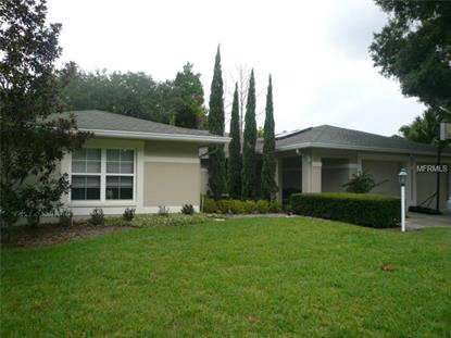 5019 BRIDGEPORT DRIVE Safety Harbor, FL MLS# U7706738