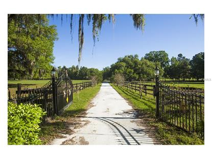 21251 MOORE ROAD Brooksville, FL MLS# U7706902