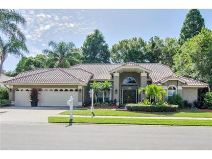 2217 WINDSONG COURT Safety Harbor, FL MLS# U7708276