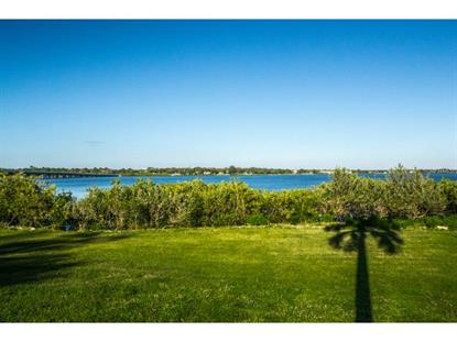 2850  PHILLIPPE PKWY  Safety Harbor, FL MLS# U7729425