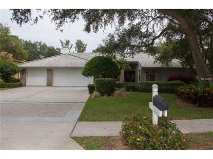 1613 HAMPTON  CT Safety Harbor, FL MLS# U7729679