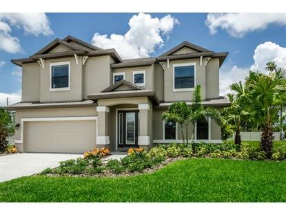 11711 KIERKEL  LN Seminole, FL MLS# U7732622
