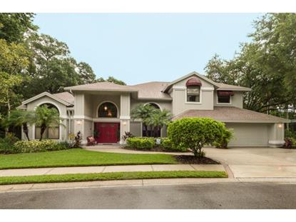 2303  EATON CT  Safety Harbor, FL MLS# U7743791