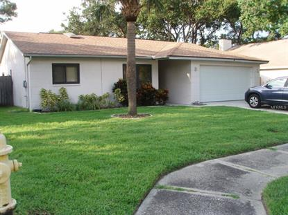 3202 COVENTRY  N Safety Harbor, FL MLS# U7743801
