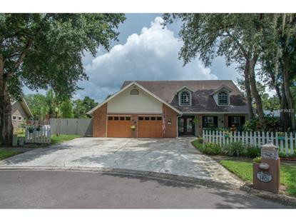 1401 CRESTWOOD  CT N Safety Harbor, FL MLS# U7743990