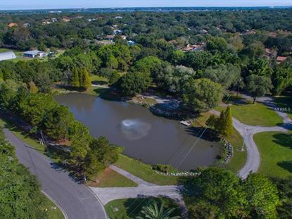 2421 MEANDER  LN Safety Harbor, FL MLS# U7744105