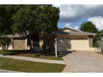 109 TIMBER  CIR Safety Harbor, FL MLS# U7745611