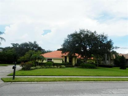 2403  HUNTINGTON BLVD  Safety Harbor, FL MLS# U7747160