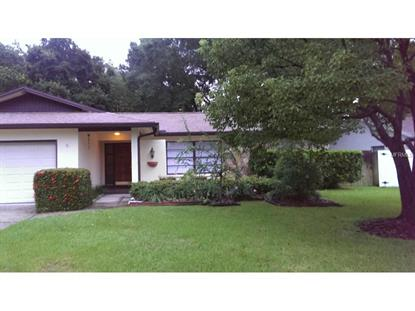 2116 FLAMINGO  PL Safety Harbor, FL MLS# U7751557