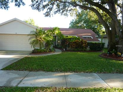 59 TURNSTONE  DR Safety Harbor, FL MLS# U7752073