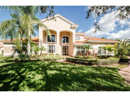 7675  ARALIA WAY  Seminole, FL MLS# U7755625