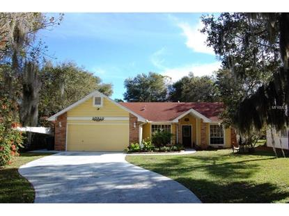 710  1ST AVE N Safety Harbor, FL MLS# U7763932