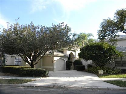 408 GEORGETOWN PL Safety Harbor, FL MLS# U7768843