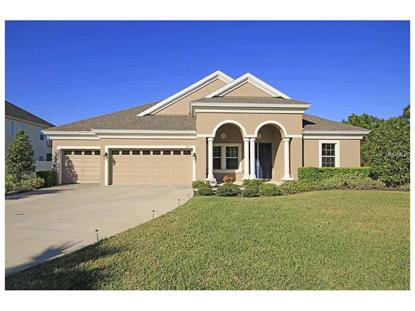 8955 CRYSTAL CREEK CT Land O Lakes, FL MLS# U7771962